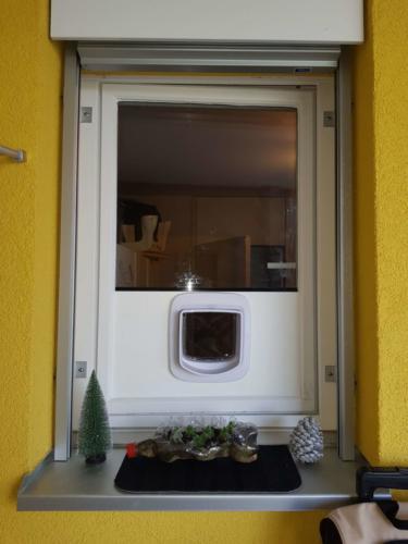 Fenster mit Katzenklappe